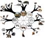 Dodging Darwin: How Ken Ham's Ark Encounter is Slowly EmbracingEvolution